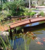 Lago ornamental Calembe