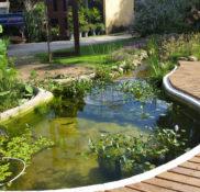 Lago ornamental A+
