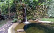 Piscina biológica Alto da Boa Vista